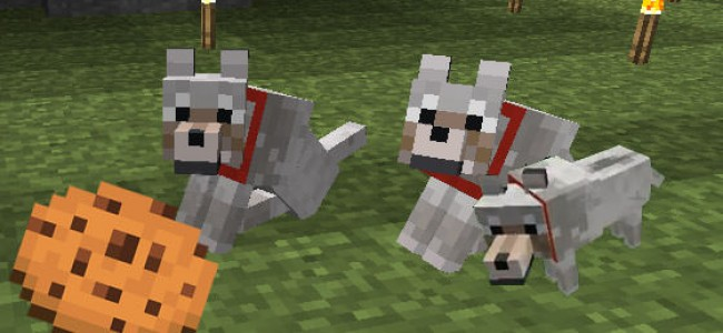 Wolves and cookies go live in Minecraft. What else do we need?