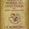 Harry Potter spinoff FANTASTIC BEASTS AND WHERE TO FIND THEM to be directed by…