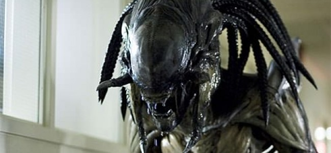 THIS is How You Make an AvP Movie