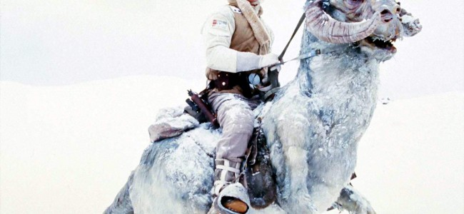 Geek Dad Report, Episode 34 – Now That's a Tauntaun