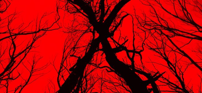 Is Blair Witch Worth Your Money?